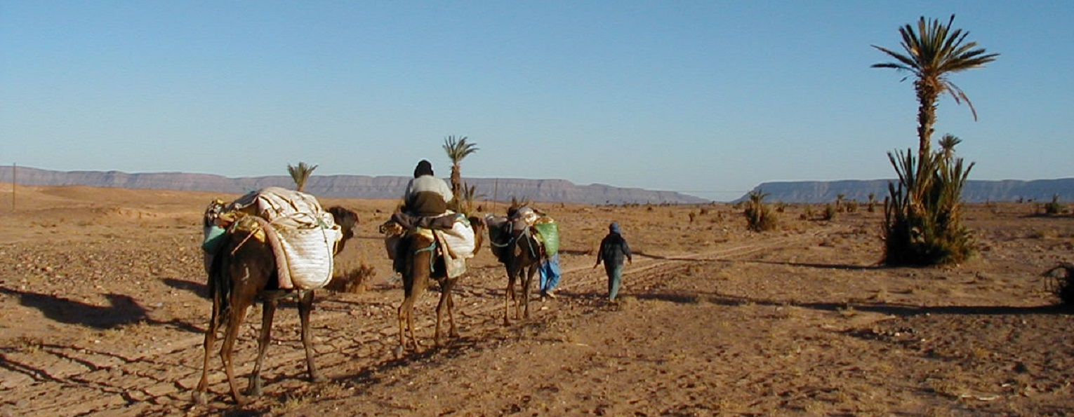Exchange with Zagour Hotel, Zagora, Draa Valley, Morocco