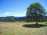 3 Randonnée de 10km à Puylaurent