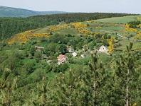 5 Randonnée de 10km à Puylaurent